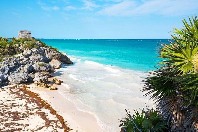 Coba and Tulum and Cenote and Playa del Carmen all in one 4X1 the most wanted!! photo 17