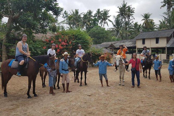 Experience Horse Riding with Ubud Swing Activity