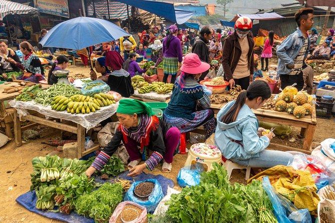 Sapa, Bac Ha Market Tour - 1 Day Tour
