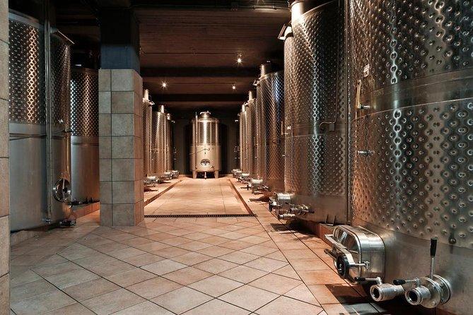 Santorini premium wine tasting