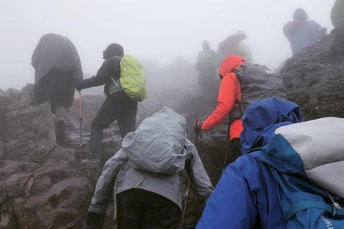 Mt. Kilimanjaro Day Hiking