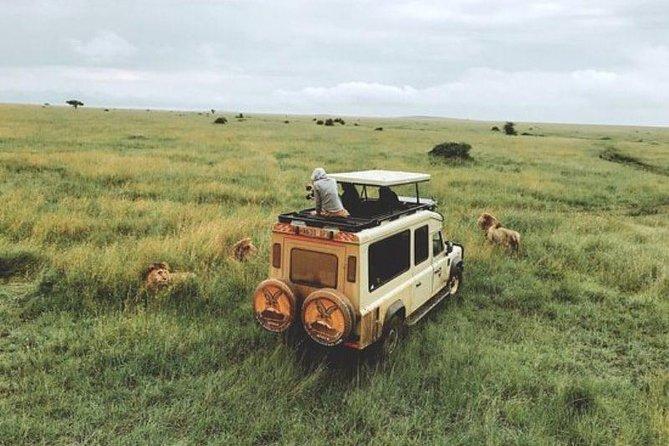 8 Days Tanzania's Great Migration Safari