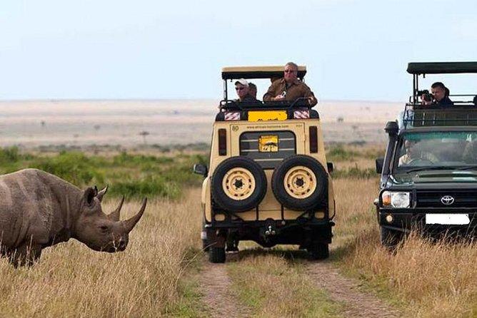 Private 8 Days Discover Kenya Safari : Amboseli, Naivasha, Nakuru & Masai Mara
