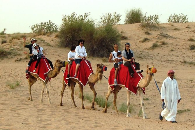 Morning: 30 mins Quad Bike Ride and Camel Ride with transfers