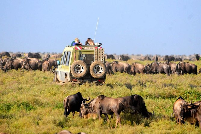 Africa Through Eyes - 4 Days Safari