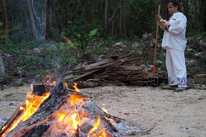 Retreat on Eco Rancho in the jungle. Steam bath,meditation and relax! photo 3