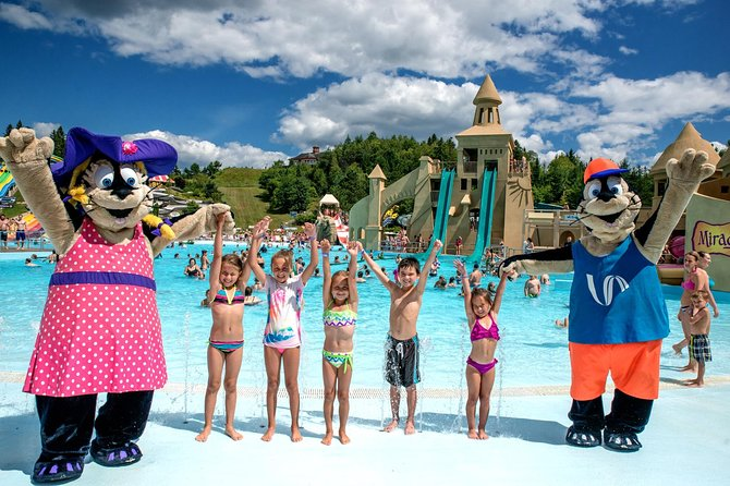 Skip the Line: Waterpark - Village Vacances Valcartier Ticket photo 2