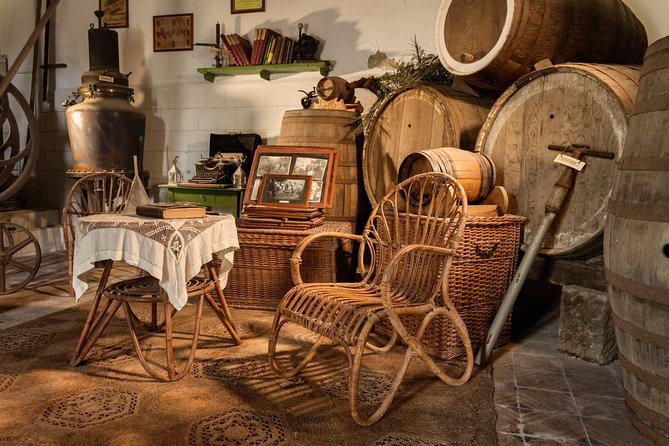 Guided tour through vineyards, wine museum, winery, wineries and wine tasting
