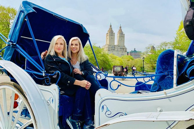 45 min Long VIP Central park carriage ride