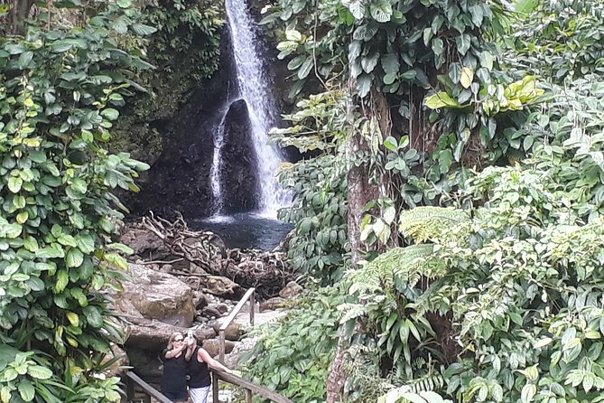 Dominica Half-Day Tour: Mero Beach, Waterfalls, Mineral bath Wotten Waven photo 13