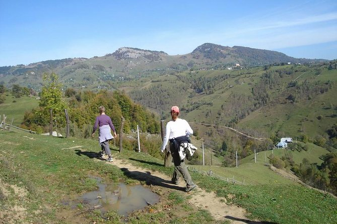 Hill Walking & Gourmet Traditional Lunch on Mountains near Bran Castle
