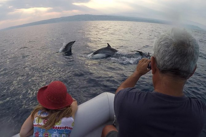 Dolphin watching - In search of dolphins in the Gulf of Catania