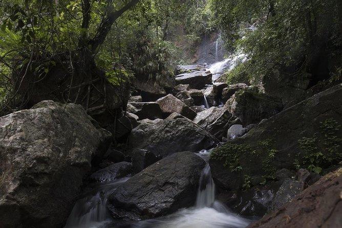 'Explore Sinharaja' rainforest - Discovery Tour (half day)