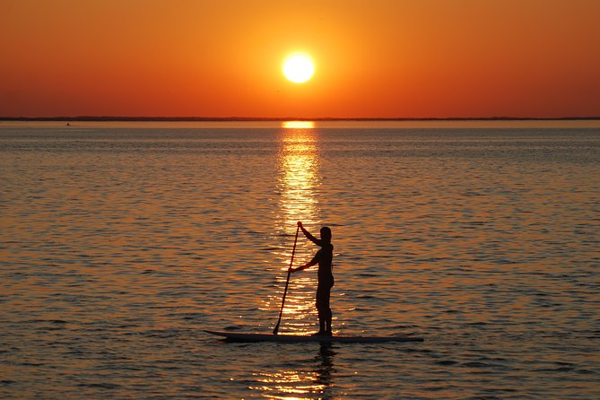 Evening Dolphin Paddle Board Excursion on Delaware Bay