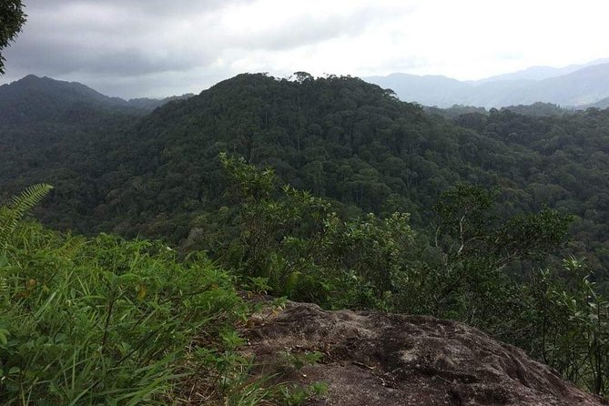 'Explore Sinharaja' rainforest - Lions Rock hike (Full day)