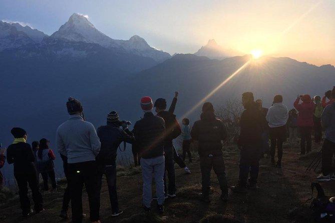 Pokhara: 4 Days Poon Hill - Ghandruk Village Trek