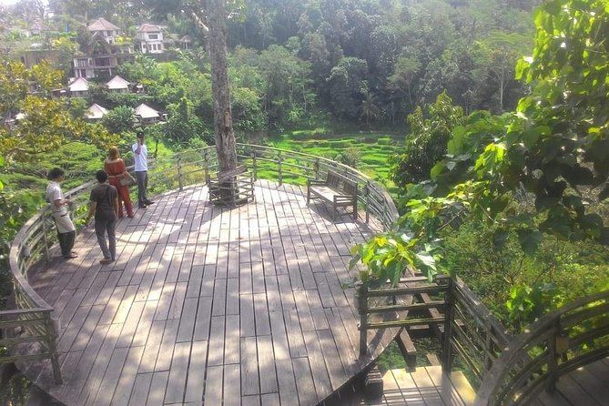 Bali Hindu temple, Rice terrace, Waterfall with lunch