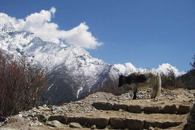 Everest - Cho La Pass - Gokyo Trek