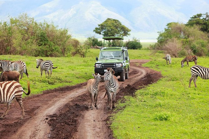 5-Day Ruaha Tanzania Wildlife Safari photo 2