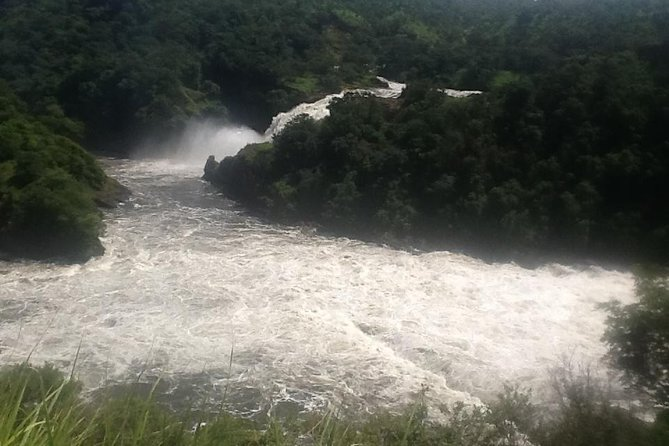 3 Days Murchision falls Safari