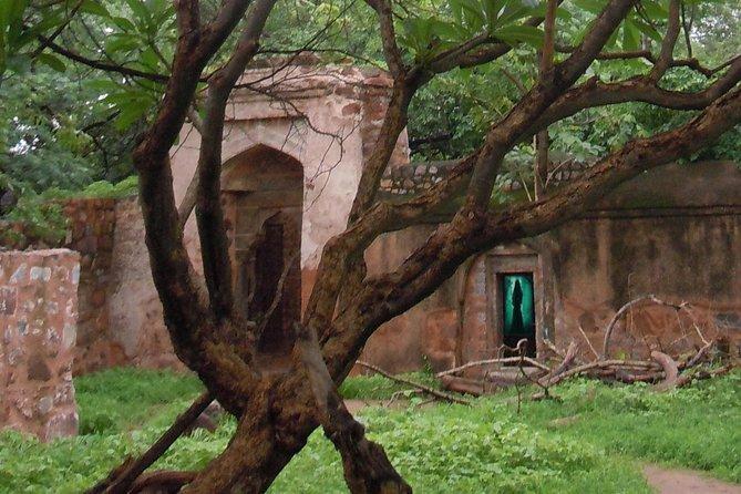 Delhi Haunted and Creepy Ruins Discovery