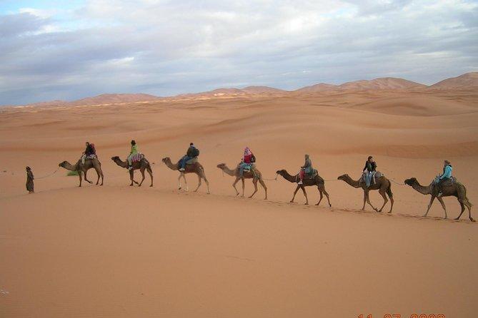 Excursion al deseirto desde Marrakech a Fez en 3 dias