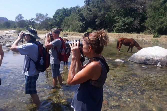 Horses and Hot Springs Tour photo 1