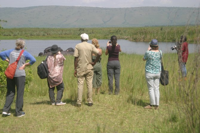 1 Day Akagera National Park Tour photo 4