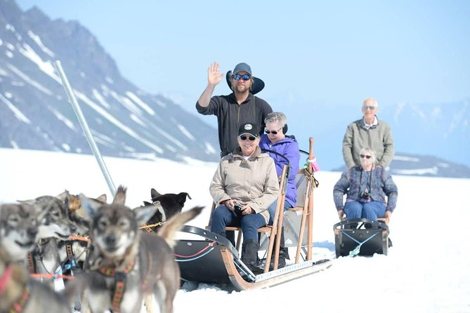 Helicopter Glacier Dogsled Tour with Lower Glacier Landing