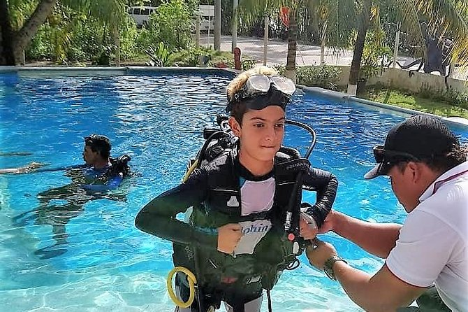 Dive Experience