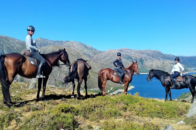 Gerês National Park full-day private tour from Porto - horseback ride and more..
