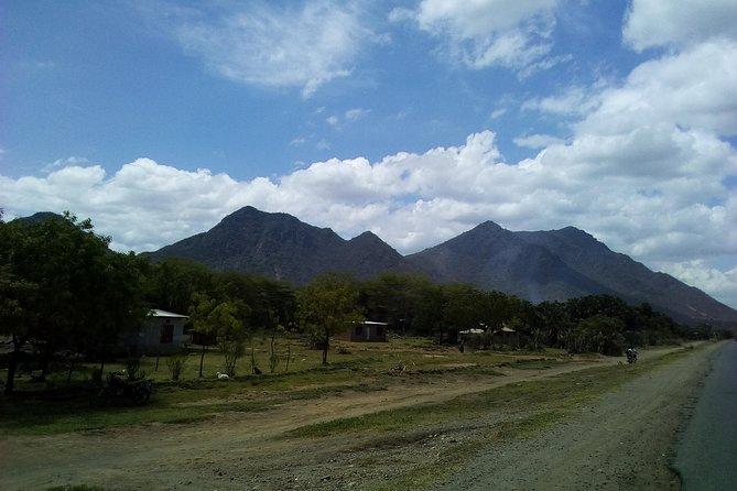 Mt.Kilimanjaro (Londorosi route)