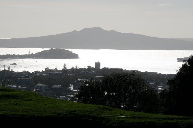 Shore Excursion Auckland Introduction Tour (3 Hours)