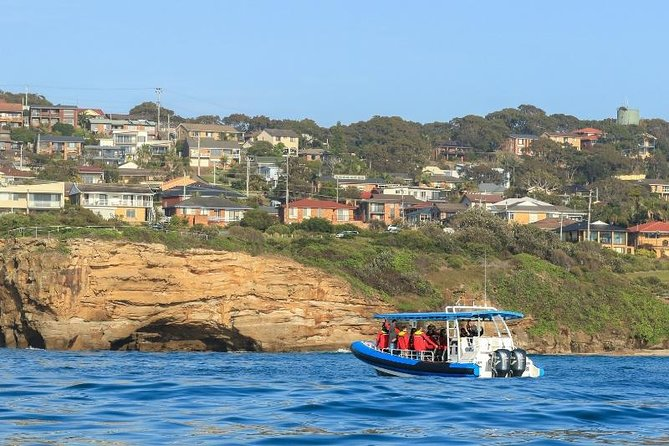 Hunter Coastal Adventure Tour by Boat from Newcastle