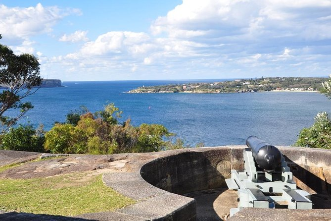 Sydney Private Tours (Luxury VW or Mercedes Sprinters)