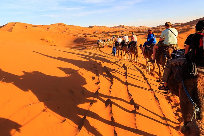 Dubai Sunrise Camel Trek with Breakfast