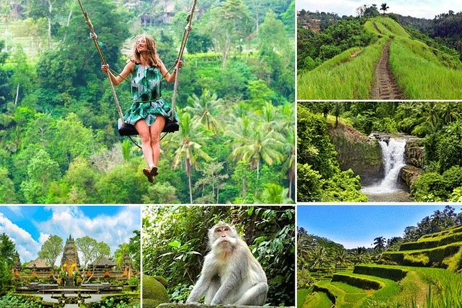 Private Tour: Best of Ubud With Jungle Swing
