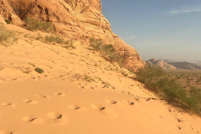 Salem Wadi Rum Desert