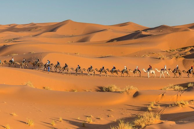 Morocco desert tour from Marrakech to Fes 3 Days photo 2