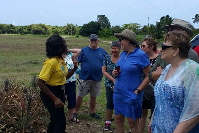 Cultural and Historical Tour in Antigua