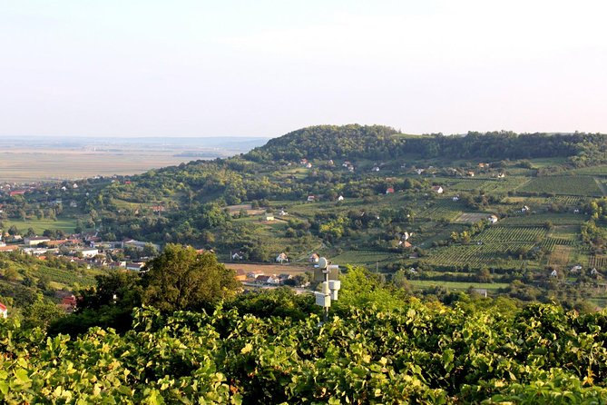 Wine and History Tour to Villany and Pecs from Budapest