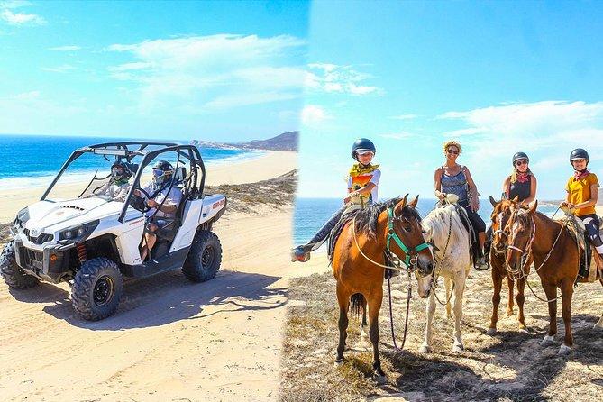 Los Cabos - COMBO Horseback Riding & UTV Tour