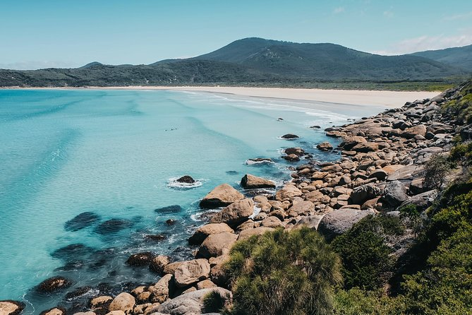 Small Group - Wilsons Promontory Hiking Day Tour from Melbourne