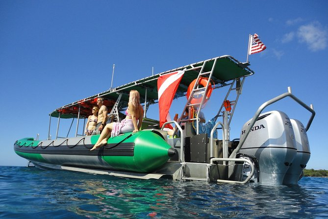 West Maui Snorkeling Experience by Boat from Ka'anapali