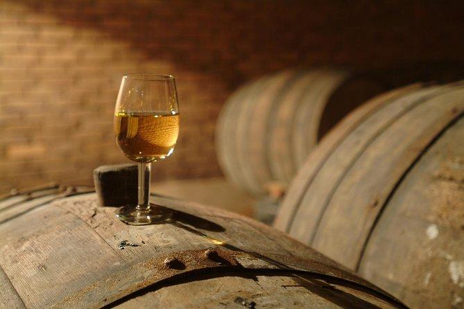 Tour de cata de vinos a la región vinícola