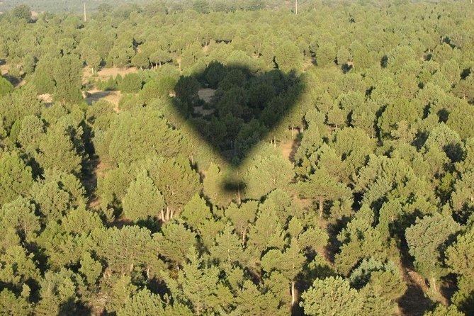 Balloon shadow over the natural park