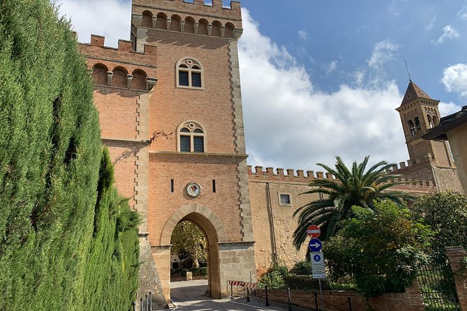Bolgheri Wine Tour from Livorno