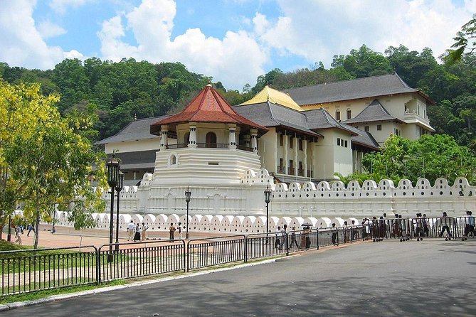 Day trip to Kandy, Pinnawala, Ape Gama, Tea Factory & Peradeniya All Inclusive photo 11