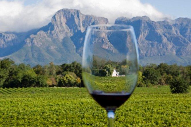 Cape town, Wine tasting Private Tour