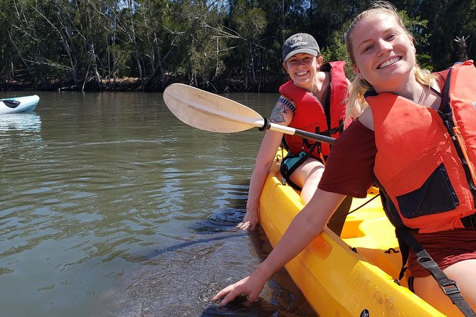 Manatee and Dolphin Kayaking | Haulover Canal (Titusville)